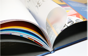 multipage_publications-1